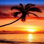 Tropical beach sunset with palm tree Swindon photo booth hire