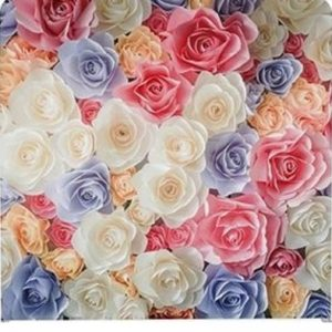 REd, blue and white flower blooms photo booth backdrop
